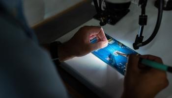 Multicare Lichttechniek CV in Dordrecht